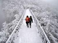 Покрытый инеем мост в горах Тяньмэнь в Китае. Reuters, Фото: 24