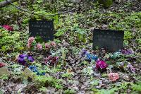 Кладбище домашних животных в Туле, Фото: 35