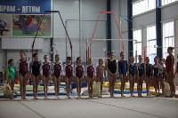 Соревнования по спортивной гимнастике на призы Заслуженных мастеров спорта , Фото: 5