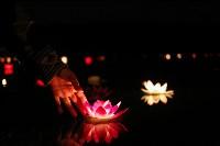 Фестиваль водных фонариков., Фото: 48