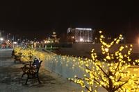 Новогодняя Тула. Декабрь 2013, Фото: 21