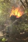 Пожар около Фролова, Фото: 12