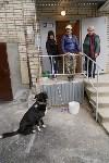 Алексей Дюмин посетил дом в Ясногорске, восстановленный после взрыва, Фото: 42