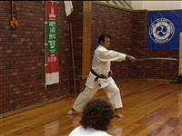 Vеждународный семинар известного мастера данного стиля японца Ханши Дзендзи Идэгучи, Фото: 8