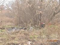 Ситуация с уборкой мусора в Пролетарском районе, Фото: 3