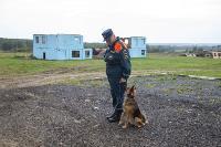 Испытания кинологов в Тульском спасательном центре, Фото: 6