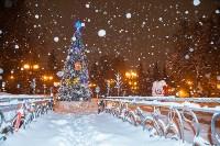 Сказочная зима в Туле, Фото: 21