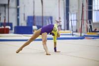 Спортивная гимнастика в Туле 3.12, Фото: 120