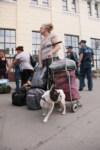 В Тулу прибыли 450 беженцев, Фото: 20