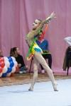 Соревнования по художественной гимнастике 31 марта-1 апреля 2016 года, Фото: 92
