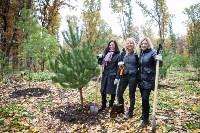 В Центральном парке Тулы появился сосновый бор «Слободы», Фото: 30