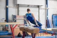 Тульский гимнаст Иван Шестаков, Фото: 4