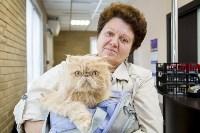 Тульский центр ветеринарной медицины открылся по новому адресу, Фото: 2