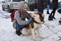 Праздник северных собак на Куликовом поле , Фото: 9