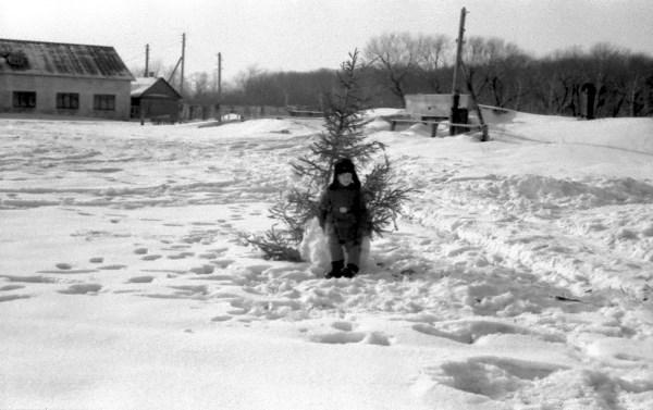 Богородицк. Новый 1966 год.
