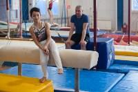 Мужская спортивная гимнастика в Туле, Фото: 2