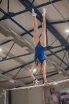 Первенство ЦФО по спортивной гимнастике, Фото: 86