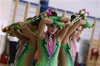 Первый этап Всероссийских соревнований по спортивной гимнастике среди юношей - «Надежды России»., Фото: 41