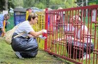 Чиновников в Комсомольском парке ждал большой фронт работ: требовалось покрасить заборы, урны, скамейки, детские игровые площадки., Фото: 2