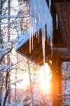 Снежное Поленово, Фото: 74