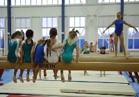 В Туле проверили ближайший резерв российской гимнастики, Фото: 24