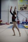 Соревнования по спортивной гимнастике на призы Заслуженных мастеров спорта , Фото: 24