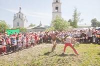 В Тульской области прошел фестиваль крапивы, Фото: 250