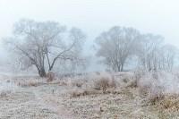 Ледяное утро в Центральном парке, Фото: 7