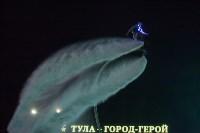 В Туле прошло шоу «летающих людей». Фоторепортаж, Фото: 55