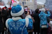На площади Ленина в Туле открылась новогодняя ярмарка , Фото: 9
