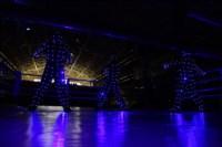"""ХХ Всероссийские соревнования по боксу класса """"А"""" """"Гран-при Тулы"""", Фото: 62"""