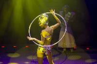 Шоу фонтанов «13 месяцев» в Тульском цирке – подарите себе и близким путевку в сказку!, Фото: 46