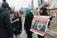 Более 8000 туляков требуют запретить убийство бездомных животных, Фото: 34