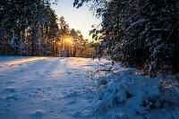 Снежное Поленово, Фото: 63