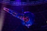 Шоу фонтанов «13 месяцев»: успей увидеть уникальную программу в Тульском цирке, Фото: 103