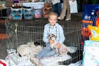 Благотворительный фестиваль помощи животным, Фото: 2