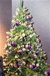 Предпремьерный показ «Ёлки 3!» К/т «Синема Стар». 25 декабря 2013, Фото: 31