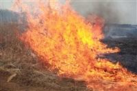 """Возгорание сухой травы напротив ТЦ """"Метро"""", 7.04.2014, Фото: 9"""