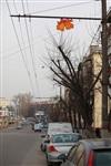В Туле вечный Новый год, Фото: 7