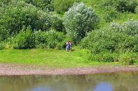 В Тульской области началась расчистка русел Оки и Упы, Фото: 17
