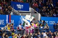 Женский хоккейный матч Канада-Финляндия. Зимняя Олимпиада в Сочи, Фото: 33