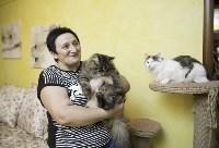 Пристроенные домашние животные, Фото: 23