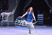 Цирковое шоу, Фото: 57