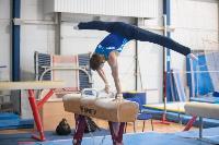 Тульский гимнаст Иван Шестаков, Фото: 5