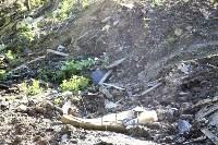 Незаконную свалку на берегу Тулицы спрятали под грудой земли, Фото: 3