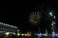 В Туле завершились новогодние гуляния, Фото: 36