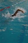 Открытые чемпионат и первенство Тульской области по плаванию на короткой воде, Фото: 1