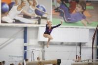 Спортивная гимнастика в Туле 3.12, Фото: 165
