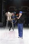 Губернаторская ёлка в цирке. 25 декабря, Фото: 17