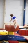 Спортивная гимнастика в Туле 3.12, Фото: 3